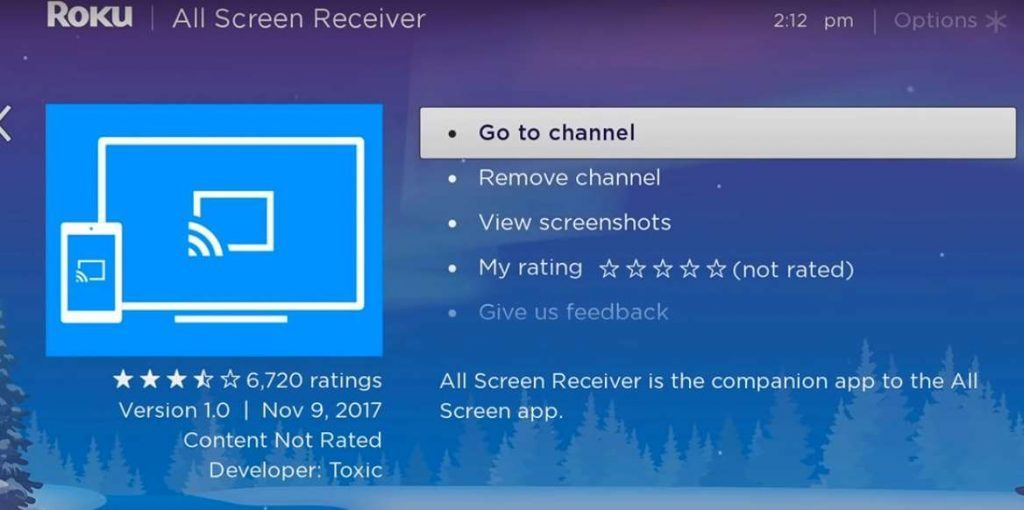 All Screen Receiver For PC
